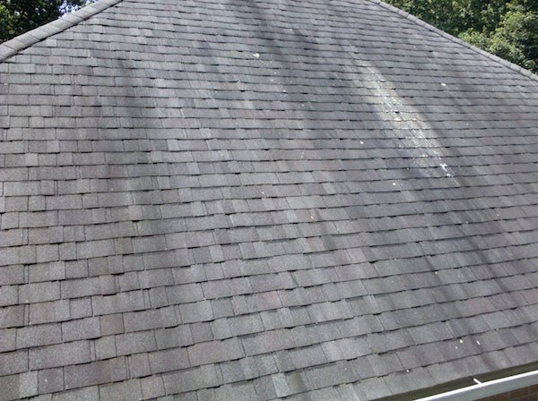 Get rid of and prevent roof algae and mold